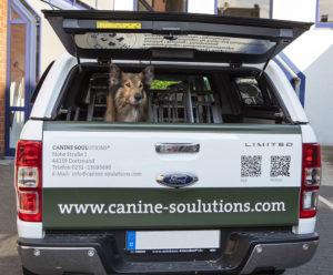 Klenke CanineSoulutions Fahrzeug